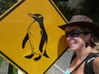 Stewart Island, à l'autre bout du bout du monde…