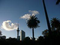 Internship at 360 Auckland abroad