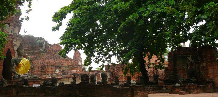 Le Buddha d'Ayuthaya