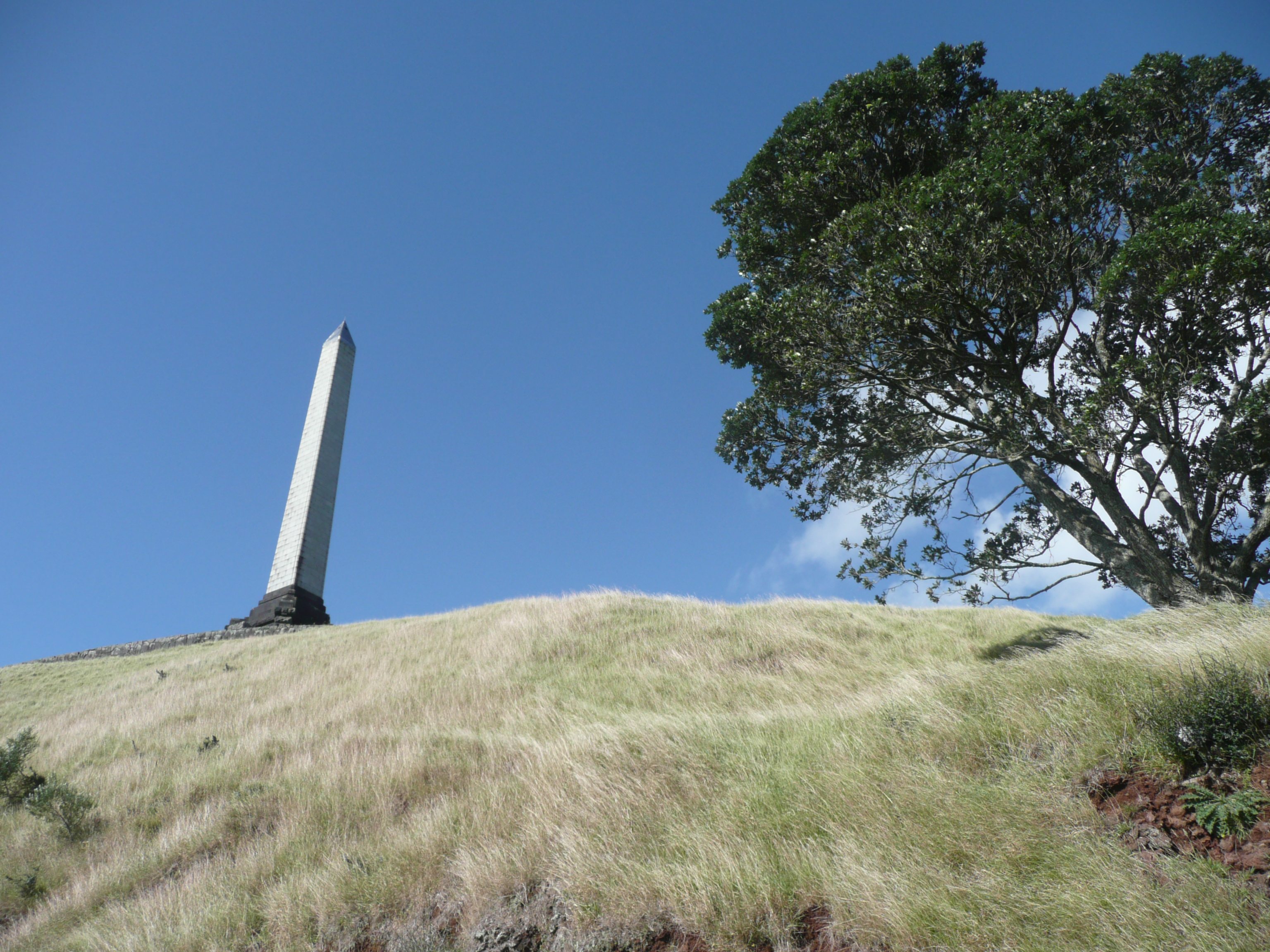 auckland_onetreehill