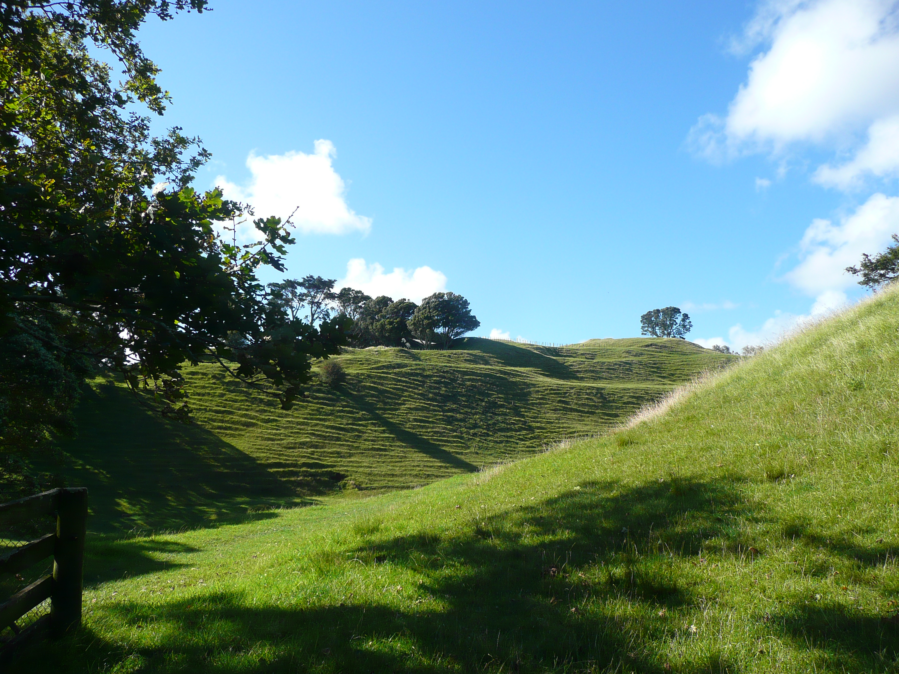 auckland_hill