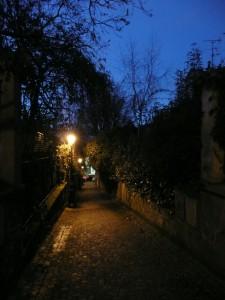 Danube_Paris
