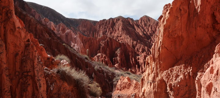 Le Nord Argentin, Salta et Tilcara
