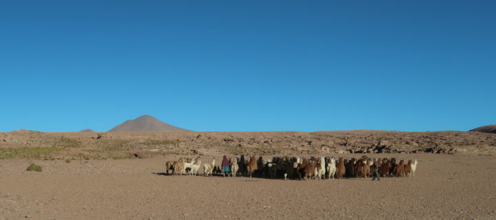 L'altiplano andin, et sa capitale la Paz
