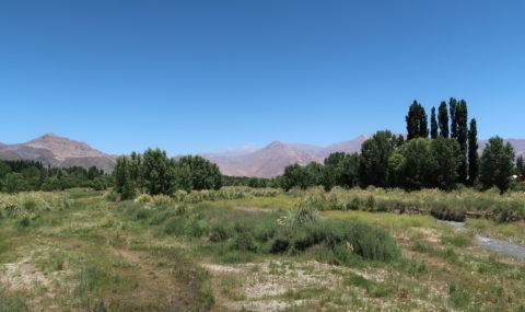 Entre Andes et vignobles, arrêt à Mendoza